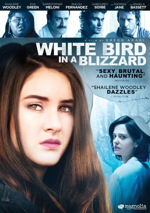 Biały ptak w zamieci / White Bird in a Blizzard