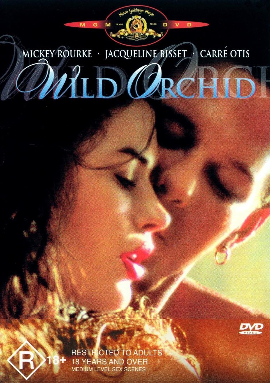 Dzika Orchidea / Wild Orchid