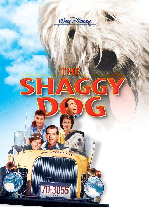 Na Psa Urok / The Shaggy Dog