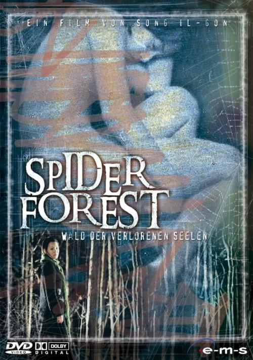 Geomi sup / Spider Forest