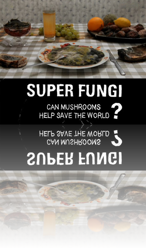 Supergrzyby Na Ratunek! / Superfungi