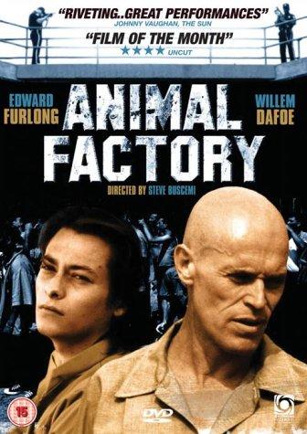 Gniazdo Os / Animal Factory