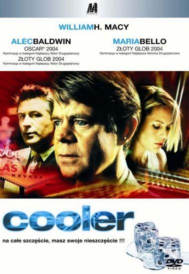 Cooler / The Cooler