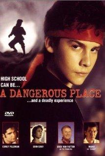 Niebezpieczne miejsce / A Dangerous Place