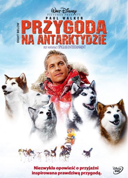 Przygoda na Antarktydzie 2006 DVDRip