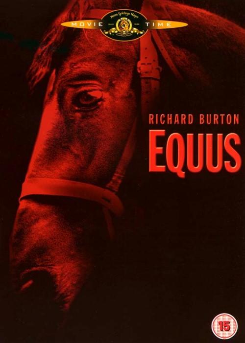 Jeździec / Equus