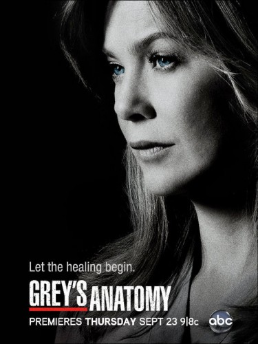 Chirurdzy / Grey's Anatomy (Sezon 12)