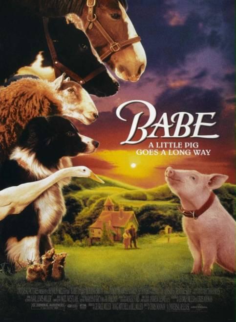 Babe - świnka z klasą / Babe