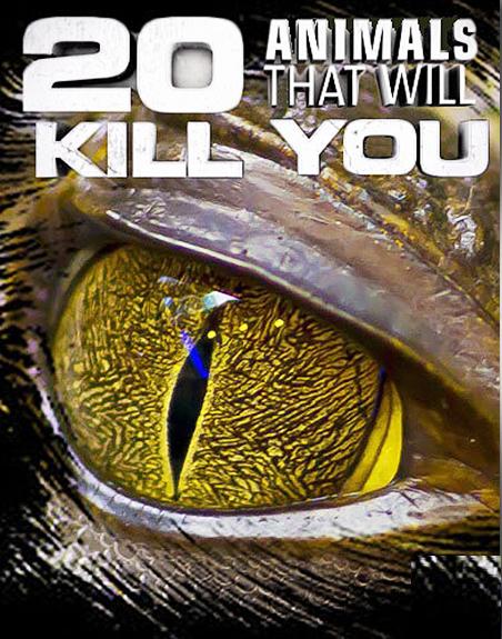 Zwierzęta, które zabijają ludzi / 20 Animals That Will Kill You