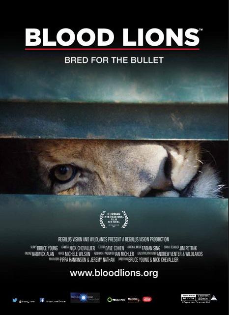 Lwy do odstrzału / Blood Lions - Bred for the Bullet