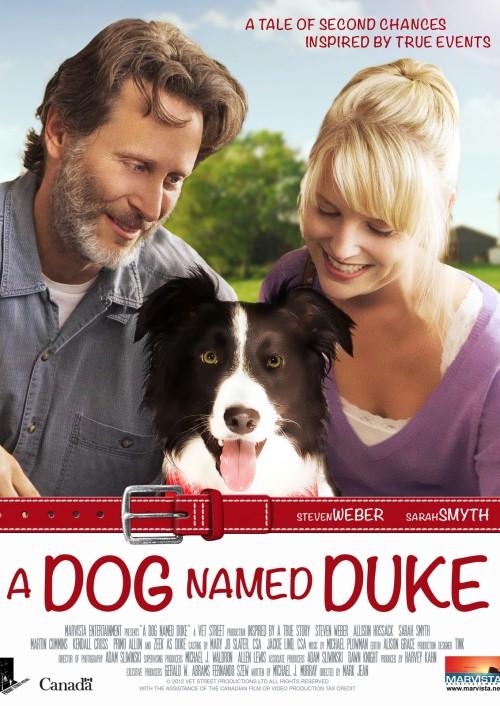 Pies imieniem Duke / Duke