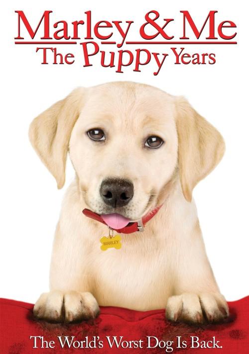 Marley i ja: Szczenięce lata / Marley and Me: The Puppy Years