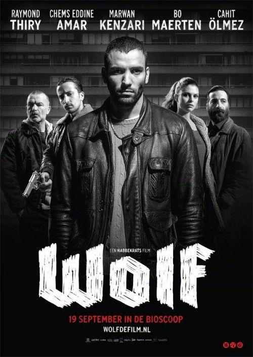 Wilk / Wolf